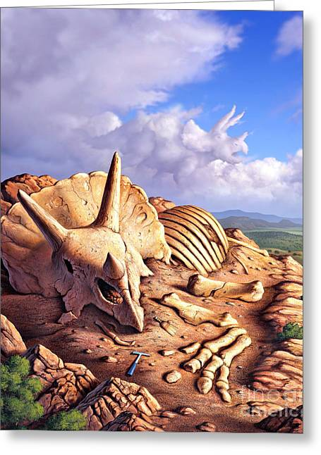 Bone Pile Greeting Cards - The Exposed Bones Of A Triceratops Greeting Card by Jerry LoFaro