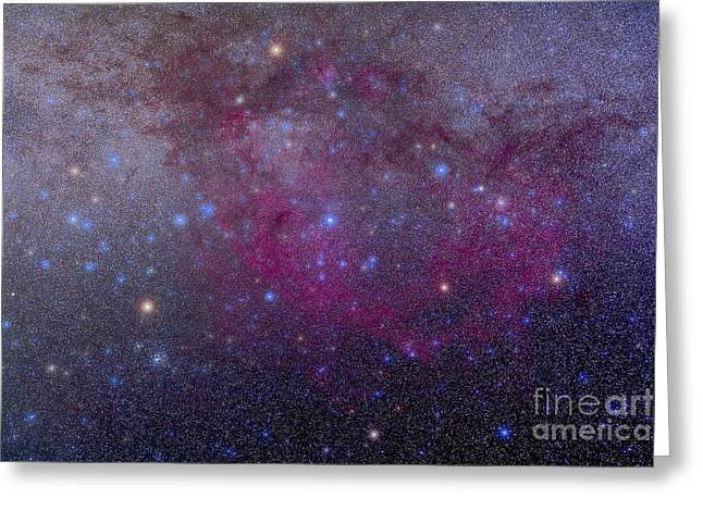 Double Cluster Greeting Cards - The Extensive Gum Nebula Area Greeting Card by Alan Dyer
