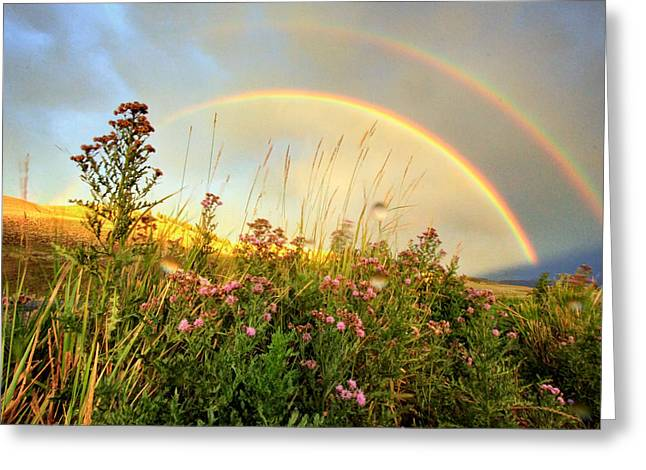 Double Rainbow Digital Art Greeting Cards - The Fading Rainbow Greeting Card by Jackie Novak