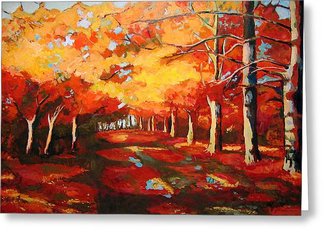 Reflection Of Trees In The Forest Greeting Cards - The Fall Greeting Card by Adriana Vasile