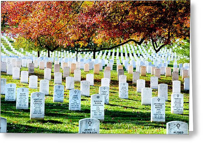 Arlington Greeting Cards - The Fall Greeting Card by Greg Fortier