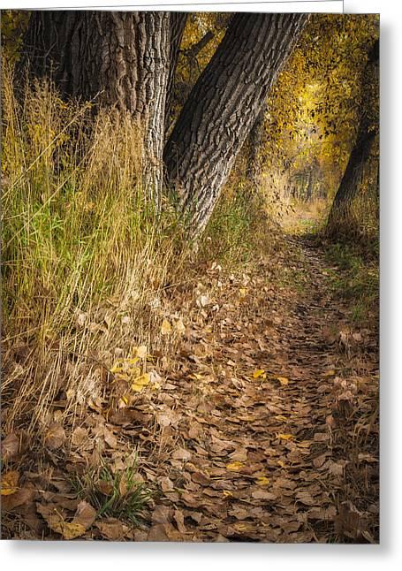 The Fall Way Home Greeting Card by Michael Van Beber
