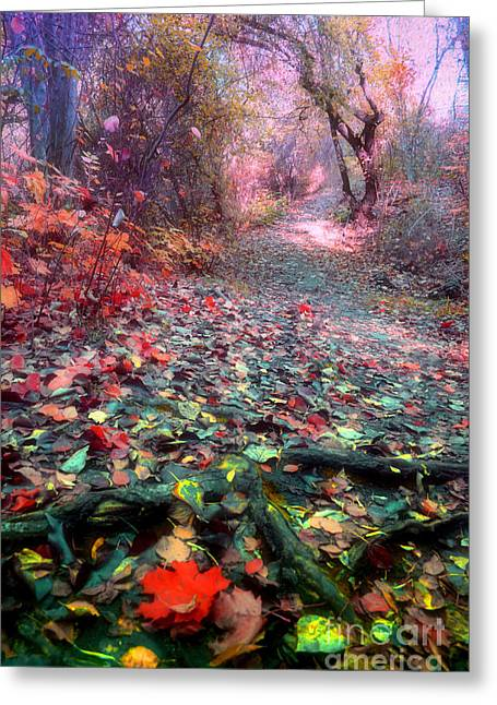 Tree Roots Photographs Greeting Cards - The Fallen Leaves Greeting Card by Tara Turner