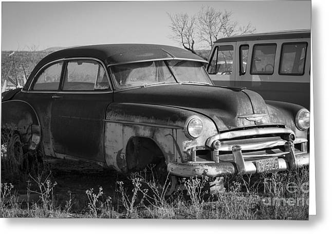 The Family Car Greeting Card by Amber Kresge
