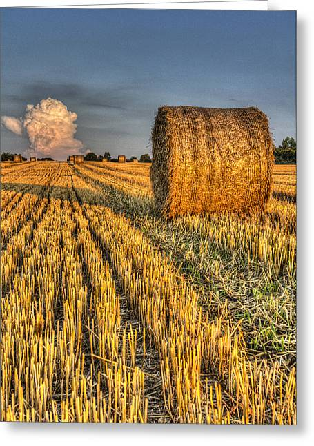 Farmers Field Greeting Cards - The farm and the face in the cloud Greeting Card by David Pyattd