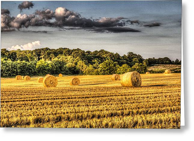 Farmers Field Greeting Cards - The Farm In Summer Greeting Card by David Pyatt
