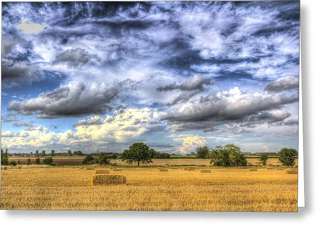 Making Hay Greeting Cards - The farm in the summertime  Greeting Card by David Pyatt