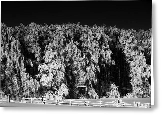 Snow-covered Landscape Greeting Cards - The Farm in Winter Greeting Card by Mountain Dreams