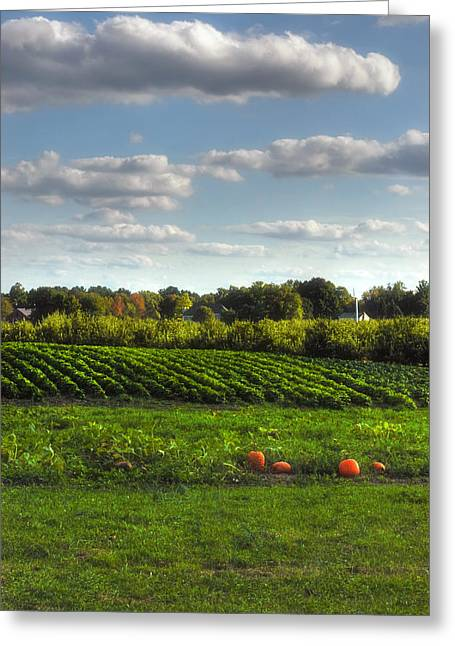Farm Stand Greeting Cards - The Farm Greeting Card by Joann Vitali