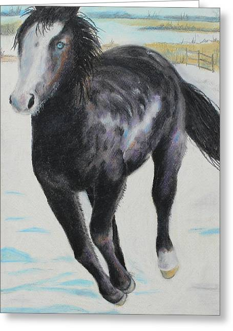 Ranch Pastels Greeting Cards - The feel of the cool air Greeting Card by Jeanne Fischer