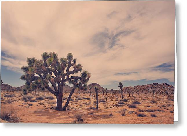 Desert Photographs Greeting Cards - The Feeling of Freedom Greeting Card by Laurie Search