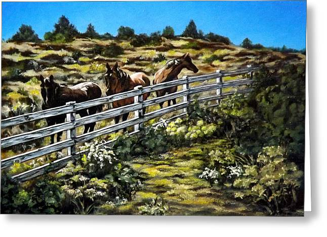 Becker Greeting Cards - The Fence Greeting Card by Linda Becker