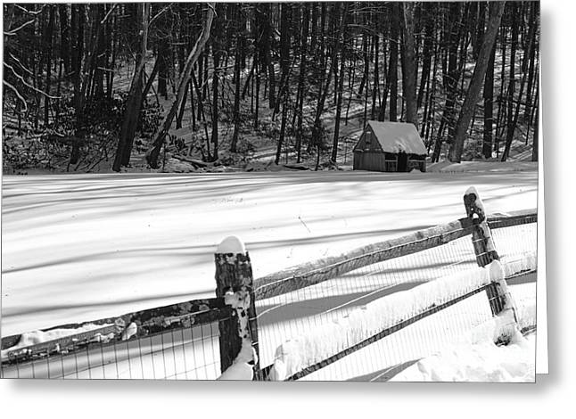 Snow Scene Landscape Greeting Cards - The Fence Line in Black and White Greeting Card by Paul Ward