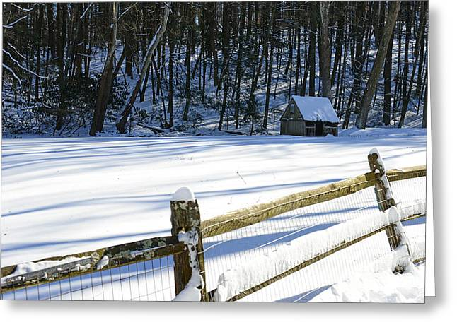 Snow Scene Landscape Greeting Cards - The Fence Line Greeting Card by Paul Ward
