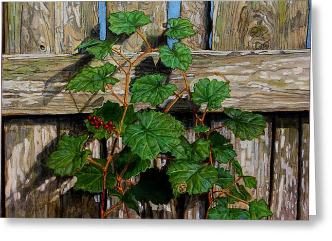 Hyper-realism Greeting Cards - The Fence Greeting Card by Paul Herman