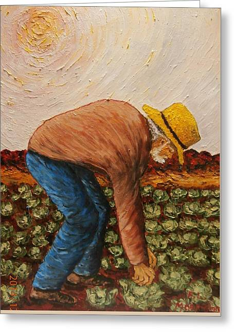 Old Man With Hat Greeting Cards - The Field Worker Greeting Card by Frank Morrison