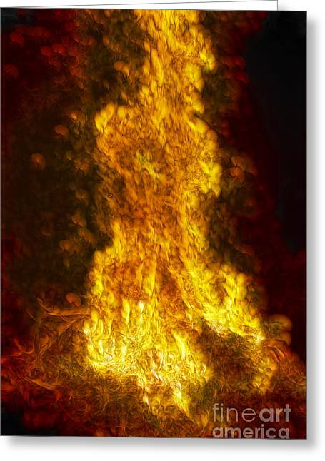 Nebuchadnezzar Greeting Cards - The Fiery Furnace No. 4 Greeting Card by Harold Bonacquist