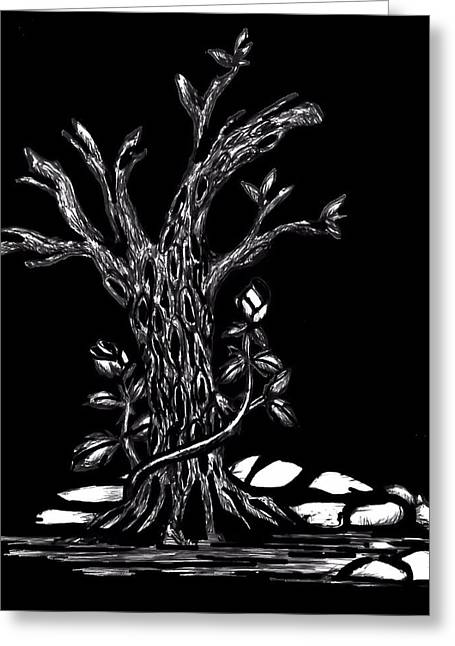 Figs Drawings Greeting Cards - The Fig Tree Greeting Card by Rondahl Mitchell