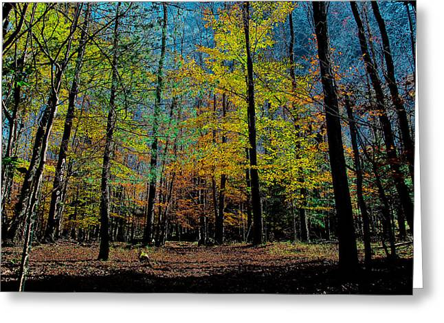 Surreal Landscape Greeting Cards - The Final Days of Fall Greeting Card by David Patterson