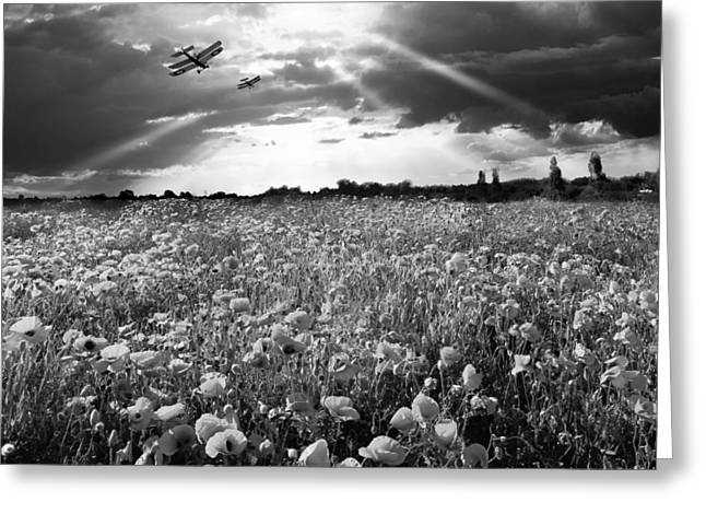 The Final Sortie Wwi Black And White Version Greeting Card by Gary Eason