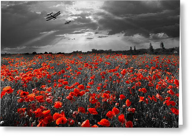 The Final Sortie Aircraft Over Field Of Poppies Wwi Version Greeting Card by Gary Eason