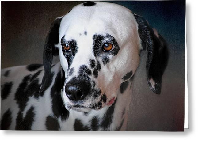 Dog Photo Greeting Cards - The Firemans Dog - Dalmatian Greeting Card by Jai Johnson