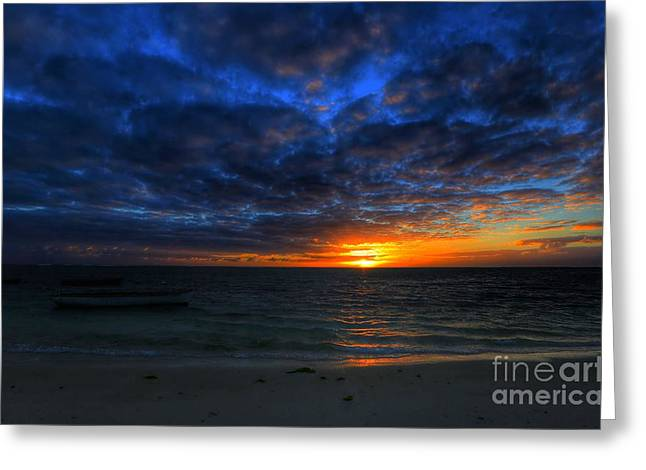 Beauty Mark Greeting Cards - The first rays of the day Greeting Card by Mark Ruti