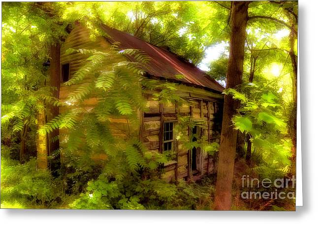 The Fixer-upper Greeting Card by Lois Bryan