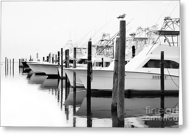 Oregon Artist Greeting Cards - The Fleet Awaits - Outer Banks Greeting Card by Dan Carmichael