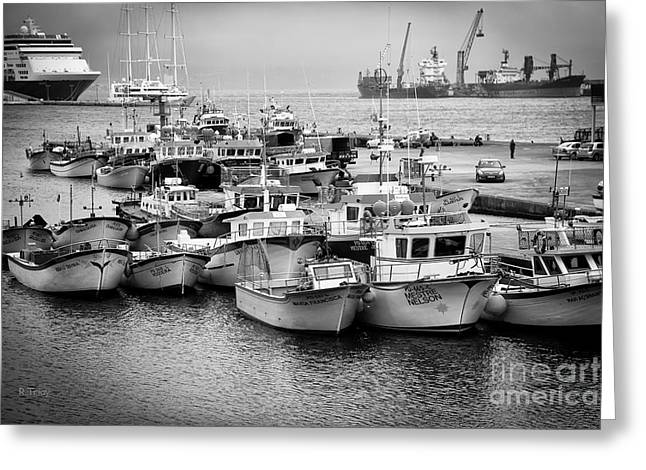 Docked Sailboats Greeting Cards - The Fleet Greeting Card by Rene Triay Photography