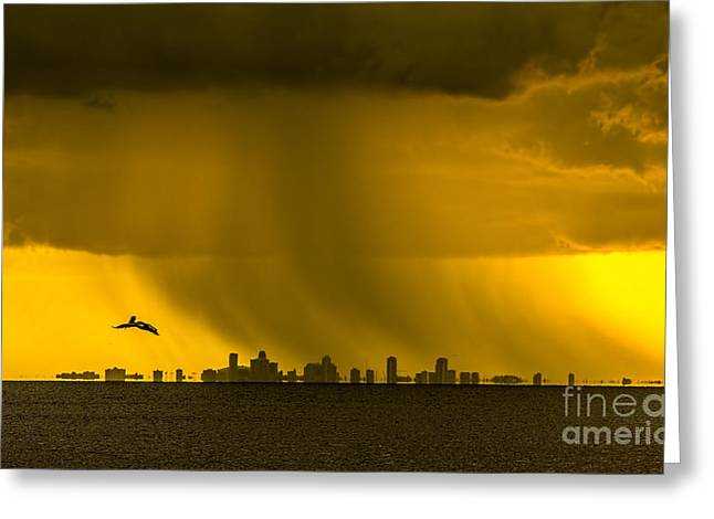 Flying White Pelicans Greeting Cards - The Floating City  Greeting Card by Marvin Spates