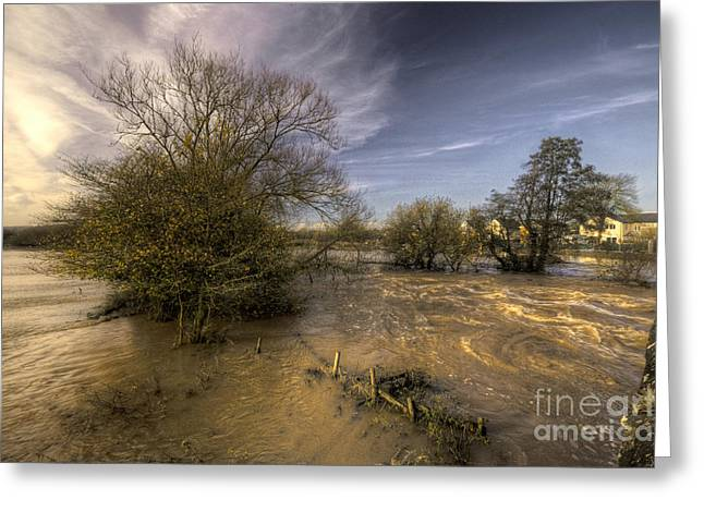 Culm Greeting Cards - The Floods at Stoke Canon  Greeting Card by Rob Hawkins