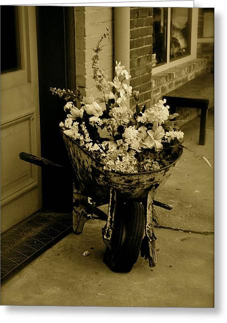 Angela Castillo Greeting Cards - The Flower Barrow Greeting Card by Cherie Haines