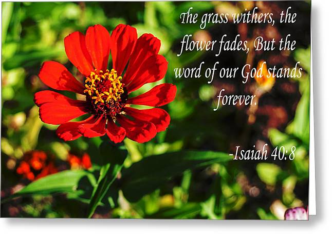 Book Of Isaiah Greeting Cards - The Flower Fades Greeting Card by Mechala  Matthews