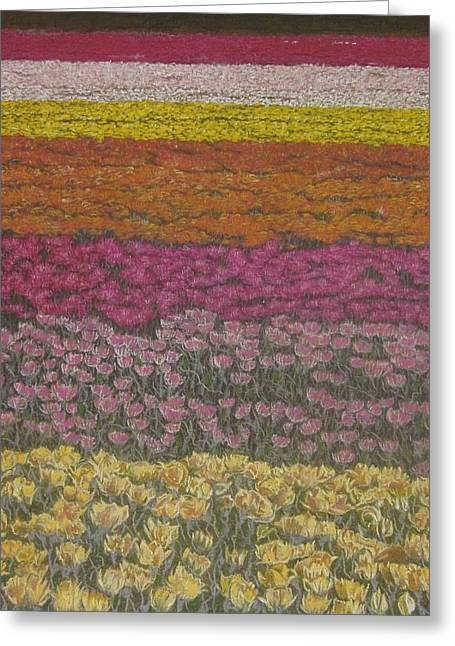 Burgundy Pastels Greeting Cards - The Flower Field Greeting Card by Harvey Rogosin