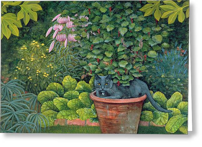 The Flower Pot Cat Greeting Card by Ditz