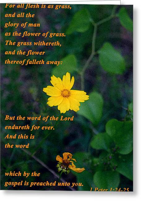 King James Version Greeting Cards - The flower thereof falleth away Greeting Card by Nina Fosdick