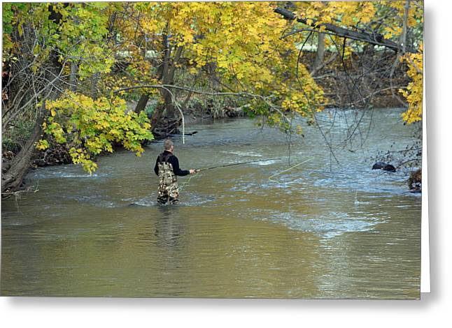 Fishing Creek Digital Greeting Cards - The Fly Fisherman Greeting Card by Kay Novy