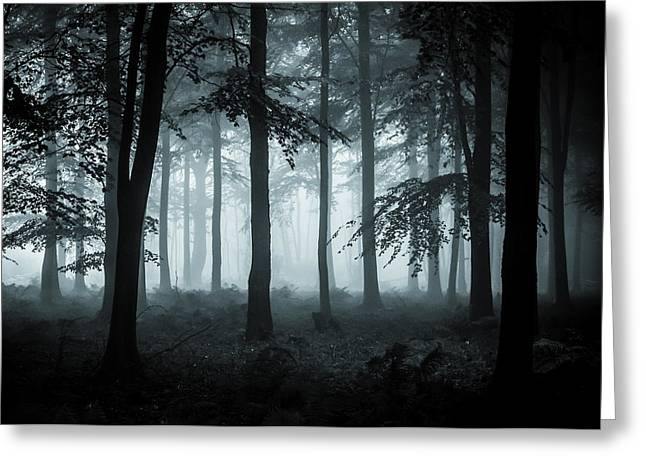 Mystical Landscape Photographs Greeting Cards - The Fog Greeting Card by Ian Hufton