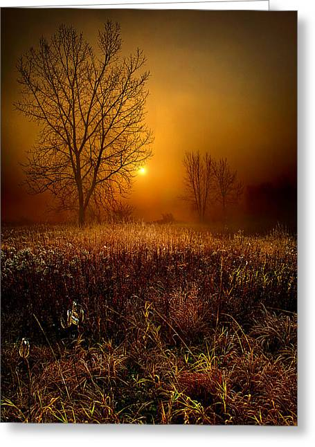 Geographic Greeting Cards - The Fog Greeting Card by Phil Koch