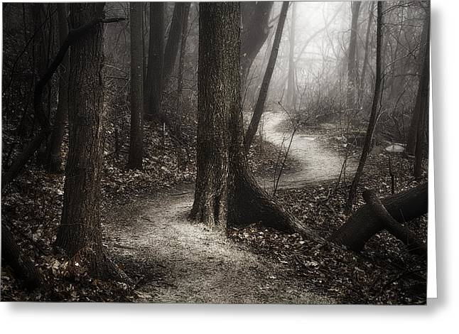 Wooded Park Greeting Cards - The Foggy Path Greeting Card by Scott Norris