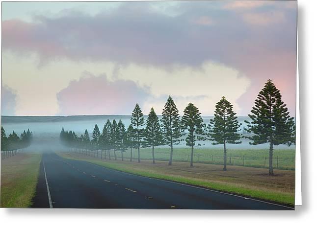 The Foggy Tree-lined Manele Road Greeting Card by Jenna Szerlag