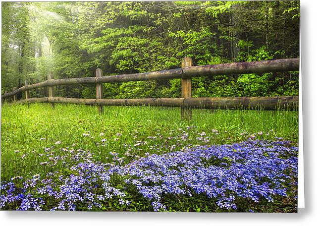 The Forest is Calling Greeting Card by Debra and Dave Vanderlaan