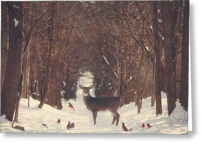 Red Deer Greeting Cards - The Forest of Snow White Greeting Card by Carrie Ann Grippo-Pike