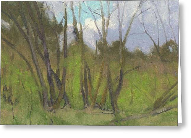 Paysage A L Greeting Cards - The forest re-awakes - La foret se reveille Greeting Card by David Ormond