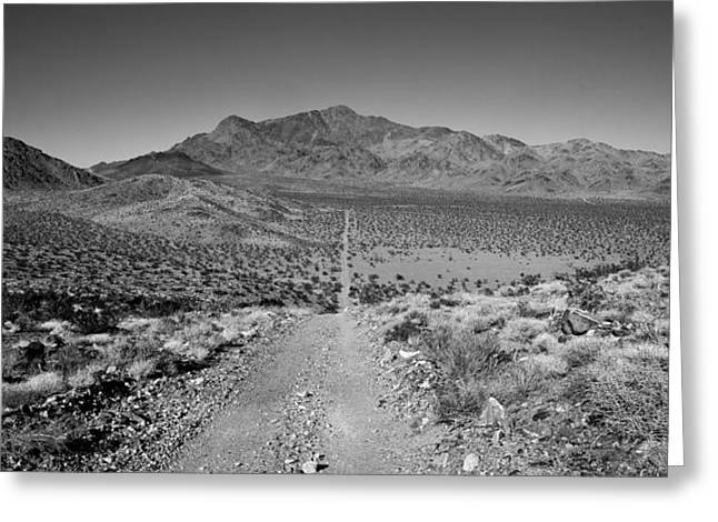 Dirt Road Greeting Cards - The Forever Road Greeting Card by Peter Tellone