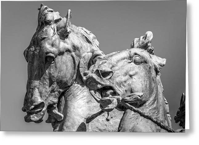 Lack And White Greeting Cards - The Fountain of Life Seahorses Greeting Card by Robert L Phillips
