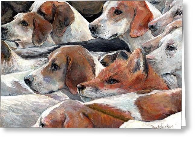 Beagle Greeting Cards - Fox Play Greeting Card by Donna Tucker