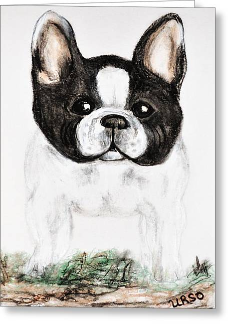 Boston Pastels Greeting Cards - The Frenchton Greeting Card by Maria Urso