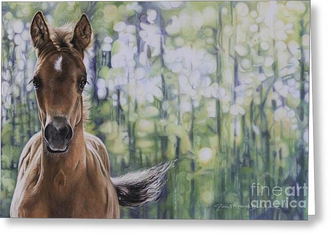 Yearling Greeting Cards - The Frilly Filly Greeting Card by Joni Beinborn